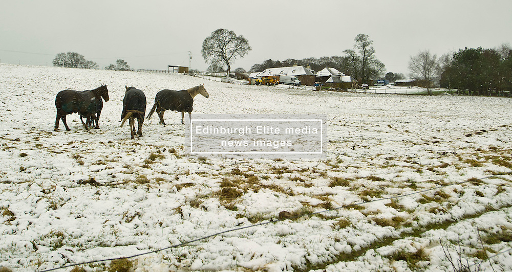 Pictured: Horses with their coats on at Lochurd Farm<br /> <br /> Poor weather conditions are taken in their stride by animals and workers on the A701 between Broughton and Moffat. <br /> <br /> Ger Harley | EEm 23 February 2017