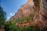 Rock formations, Zion National Park, located in the Southwestern United States, near Springdale, Utah.