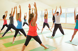 Group of People at Yoga Class