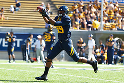 BERKELEY, CA - SEPTEMBER 08: Wide receiver Stephen Anderson #89 of the California Golden Bears warms up before the game against the Southern Utah Thunderbirds at Memorial Stadium on September 8, 2012 in Berkeley, California. The California Golden Bears defeated the Southern Utah Thunderbirds 50-31. (Photo by Jason O. Watson/Getty Images) *** Local Caption *** Stephen Anderson