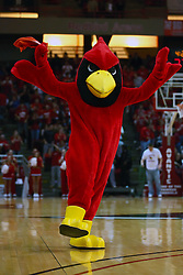 03 January 2009: Mascot Reggie the Redbird pumps up the crowd. The Illinois State University Redbirds extended their record to 14-0 with a 86-64 win over the Creighton Bluejays on Doug Collins Court inside Redbird Arena on the campus of Illinois State University in Normal Illinois