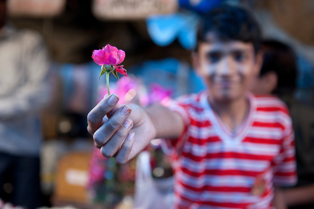 Jaipur, Rajasthan, India - November 13, 2010: A young Indian boy offers a rose from his flower stall at the market in early evening.