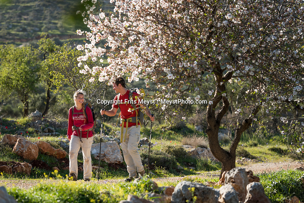 Palestine, March 2015. Hikers on the trail between Awarta and Duma. The Abraham Path is a long-distance walking trail across the Middle East which connects the sites visited by the patriarch Abraham. The trail passes through sites of Abrahamic history, varied landscapes, and a myriad of communities of different faiths and cultures, which reflect the rich diversity of the Middle East. Photo by Frits Meyst / MeystPhoto.com for AbrahamPath.org