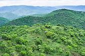 Somkhanda Private Game Reserve
