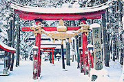 A little shrine in a small country town in northern Japan. This is not on the tourist maps.