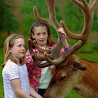 Game Fair...2.7.99.<br />