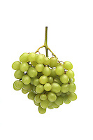 Green grapes on white background