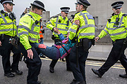 UNITED KINGDOM, London: 16 April 2019 <br /> A demonstrator is arrested as Extinction Rebellion protests continue on Waterloo Bridge today. It is the second day of protests that have appeared in five locations across the city. Police officers have made more than 120 arrests in the last 24 hours.<br /> Rick Findler / Story Picture Agency
