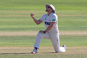 Timm Van der Gugten during the Specsavers County Champ Div 2 match between Glamorgan County Cricket Club and Leicestershire County Cricket Club at the SWALEC Stadium, Cardiff, United Kingdom on 17 September 2019.