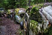Sweden, Töcksfors, Car cemetery. Volkswagen
