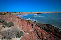 The Punta Tombo Reserve is located near Puerto Madryn, in Argentina.  Annually, the Magellanic Penguins migrate to the place of thier births.