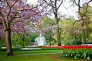 Fountain in a a water garden at Keukenhog Spring Tulip Gardens in Lisse, The Netherlands