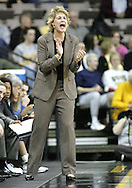 25 JANUARY 2007: Iowa head coach Lisa Bluder encourages her team in Iowa's 80-78 overtime loss to Minnesota at Carver-Hawkeye Arena in Iowa City, Iowa on January 25, 2007.