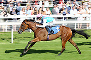 DESERT DIAMOND (1) ridden by jockey Daniel Tudhope and trained by Sir Michael Stoute winning The Infinity Tyres Irish Champions Weekend EBF Fillies Handicap Stakes over 1m 2f (£15,000)at York Racecourse, York, United Kingdom on 26 May 2018. Picture by Mick Atkins.