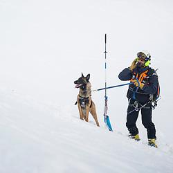 Voir le reportage complet (120 photos) http://sandrachenugodefroy.photoshelter.com/gallery/2017-02-Exercice-avalanche-a-Valloire-Complet/G0000m_O9Kg_LOxg/C0000yuz5WpdBLSQ Entra&icirc;nement conjoint des acteurs du secours en montagne sur une avalanche factice &agrave; Valloire. Intervention sous la direction des gendarmes du PGHM, de m&eacute;d&eacute;cins du SAMU, de militaires du GAM et de pisteurs du domaine skiable. Recherche de victimes par DVA, RECCO et &eacute;quipe cynophile. Sondage, gestes de premiers secours et &eacute;vacuation des victimes. <br /> F&eacute;vrier 2017 / Valloire (73) / FRANCE Entra&icirc;nement conjoint des acteurs du secours en montagne sur une avalanche factice &agrave; Valloire. Intervention sous la direction des gendarmes du PGHM, de m&eacute;d&eacute;cins du SAMU, de militaires du GAM et de pisteurs du domaine skiable. Recherche de victimes par DVA, RECCO et &eacute;quipe cynophile. Sondage, gestes de premiers secours et &eacute;vacuation des victimes. <br /> F&eacute;vrier 2017 / Valloire (73) / FRANCE<br /> Voir le reportage complet (120 photos) http://sandrachenugodefroy.photoshelter.com/gallery/2017-02-Exercice-avalanche-a-Valloire-Complet/G0000m_O9Kg_LOxg/C0000yuz5WpdBLSQ