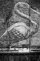 Birdy Monster Stalks London<br />
