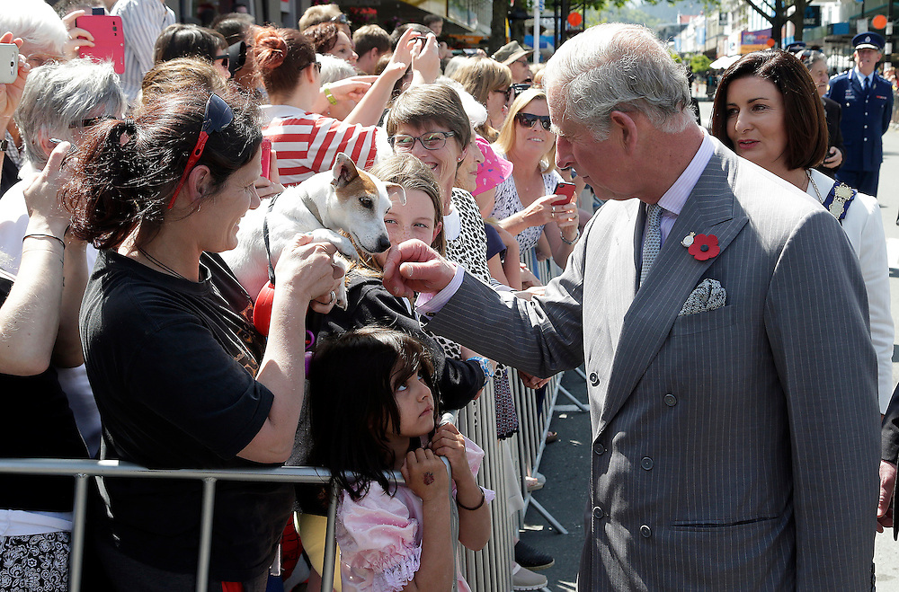 Prince Charles, Prince of Wales meets a dog during his public walkabout in Nelson, New Zealand, Saturday, November 07, 2015. Credit:SNPA / Reuters, Anthony Phelps **/POOL**