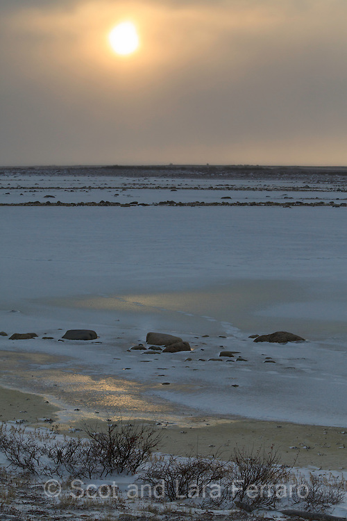 Polar bear tracks cross the ice in this Churchill landscape.