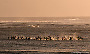 Surfers at Mavericks join in a memorial paddle out for fallen surfers.  Opening day of the Mavericks season, 2012.