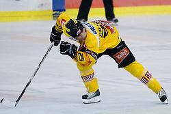Benoit Gratton (EV Vienna Capitals, #25) at 1st Round ice hockey match of EBEL league between HDD Tilia Olimpija and EV Vienna Capitals, on September 10, 2010, in Hala Tivoli, Ljubljana, Slovenia. (Photo by Matic Klansek Velej / Sportida)
