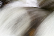 Abstract of Silverhope Creek in Silver Lake Provincial Park