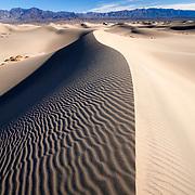 Dune Crest - Mesquite Dunes - Death Valley, CA