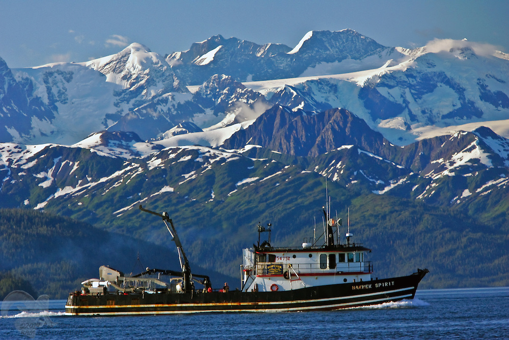 "The tender/crabber vessel ""Naknek Spirit"" cruises the waters Port Wells in Prince William Sound near the city of Whittier, Alaska."