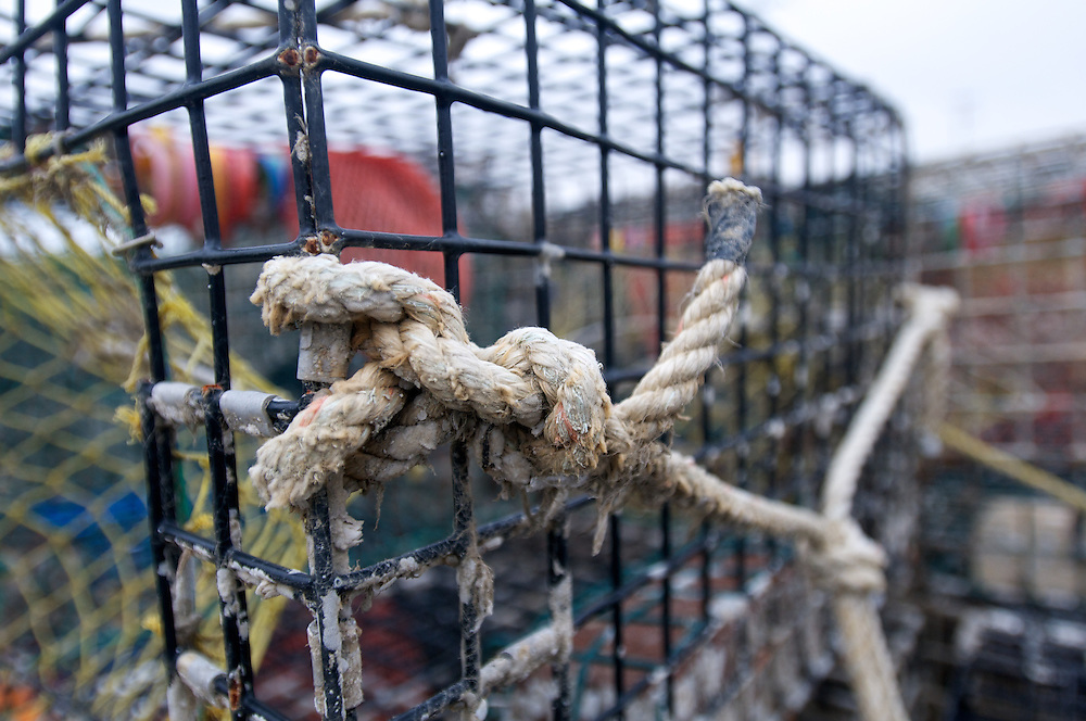 April 27, 2011 - A line holds a stack of lobster traps together on a dock in Sandwich, MA.