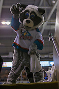 KELOWNA, CANADA - MARCH 04:  Rocky Raccoon at the Kelowna Rockets game on March 04, 2017 at Prospera Place in Kelowna, British Columbia, Canada.  (Photo By Cindy Rogers/Nyasa Photography,  *** Local Caption ***