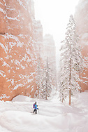 Bryce Canyon National Park in winter.