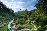 Sunken Garden Overlook at the Butchart Gardens, Brentwood Bay, Vancouver Island, B.C.