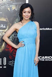Aimee Garcia at the Los Angeles premiere of 'Sicario: Day Of The Soldado' held at the Regency Village Theatre in Westwood, USA on June 26, 2018.