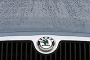 Mlada Boleslav/Tschechische Republik, Tschechien, CZE, 19.03.07: Detail mit Logo von einem Skoda Octavia auf dem Gelände der Skoda Autofabrik in Mlada Boleslav. Der tschechische Autohersteller Skoda ist ein Tochterunternehmen der Volkswagen Gruppe.<br /> <br /> Mlada Boleslav/Czech Republic, CZE, 19.03.07: Detail of Skoda Octavia car model front mask with Skoda emblem outside Skoda car factory in Mlada Boleslav. Czech car producer Skoda Auto is subsidiary of the German Volkswagen Group (VAG).
