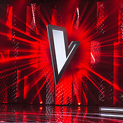 NLD/Hilversum/20180126 - The Voice of Holland 2017 show 1,