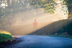 Male Cyclist Cycling on Country Road in Morning Sunlight