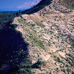 Windy Ridge and Mt. Hood, Mt. St. Helens National Volcanic Monument, Washington, US
