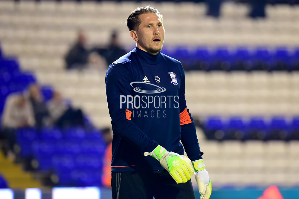 Birmingham City goalkeeper Tomasz Kuszczak (29) during the EFL Sky Bet Championship match between Birmingham City and Brentford at St Andrews, Birmingham, England on 1 November 2017. Photo by Dennis Goodwin.
