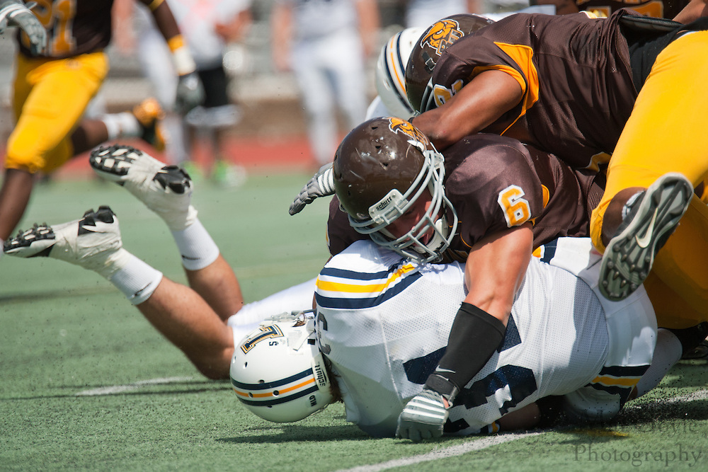Rowan University vs. Lycoming. NCAA Division III Football - September 4th, 2010.