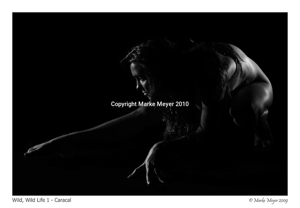 Limited edition low key art nudes for A1 prints.<br />