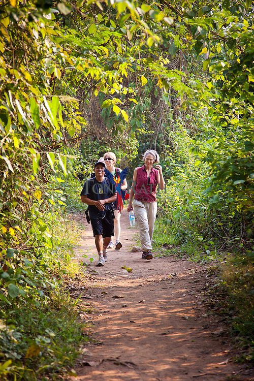 Scene shows hikers on a trail through the tropical moist forests of the Tapir Mountain Nature Reserve leading to the ancient Maya cave, Actun Tunichal Muknal, Teakettle Village, Cayo District, Belize.