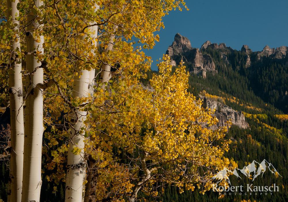 Scene near Owl Creek Pass.