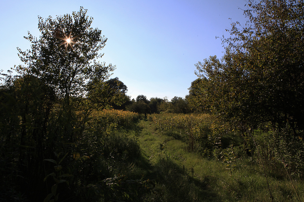 A few km away from Liberland, in Croatia