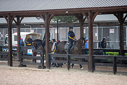 Team Australia<br /> World Equestrian Games - Tryon 2018<br /> © Hippo Foto - Dirk Caremans<br /> 16/09/2018