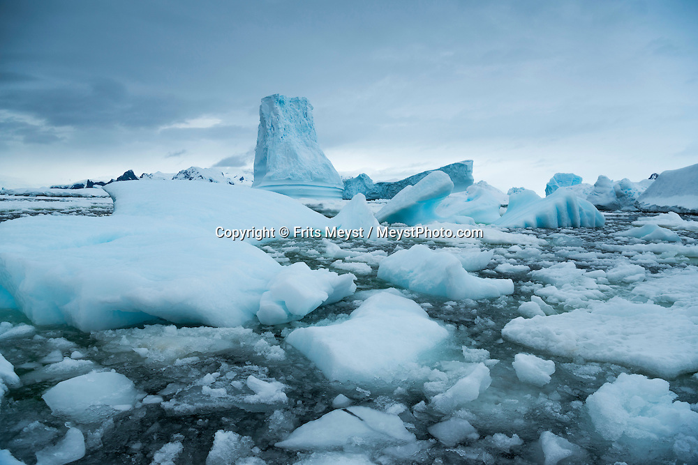 Antarctica, February 2016. we reach the Southernmost latitude ever visited by Europa, 65º 30' S to drop the zodiacs for a tour of the ice covered waters, finding Crabeater seals on our way and spectacular huge icebergs trapped on the chaotic concentrations of brash and pack ice. Dutch Tallship, Bark Europa, explores Antarctica during a 25 day sailing expedition. Photo by Frits Meyst / MeystPhoto.com