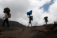 "Porters on Mount Kilimanjaro carry large packs on their heads daily to support the glamorous camping, otherwise known as ""glamping"" that most clients require when climbing to the summit."