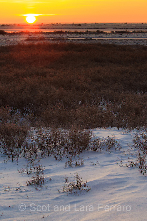 A sunrise on the tundra near Churchill Maintoba.