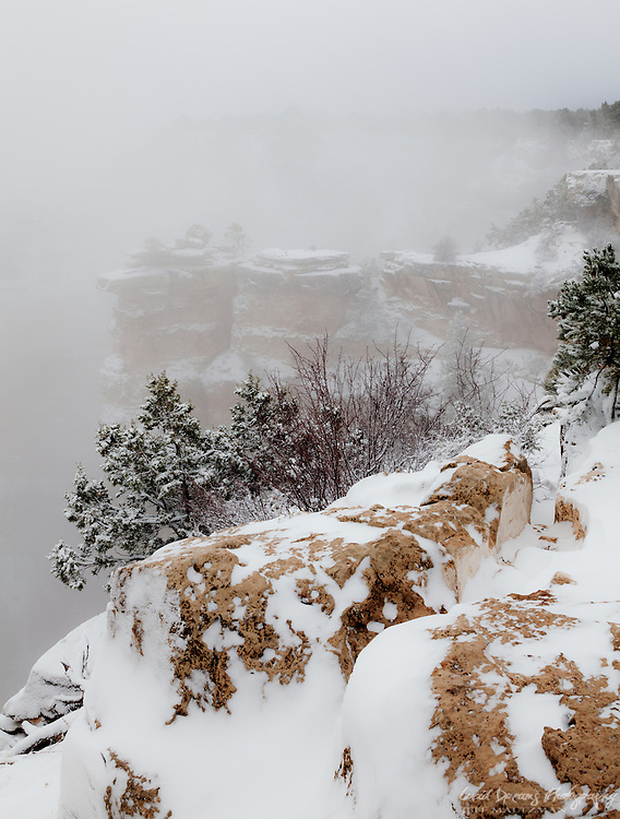 A winter storm begins to clear as the south rim of the Grand Canyon remains shrouded in snowy mist.