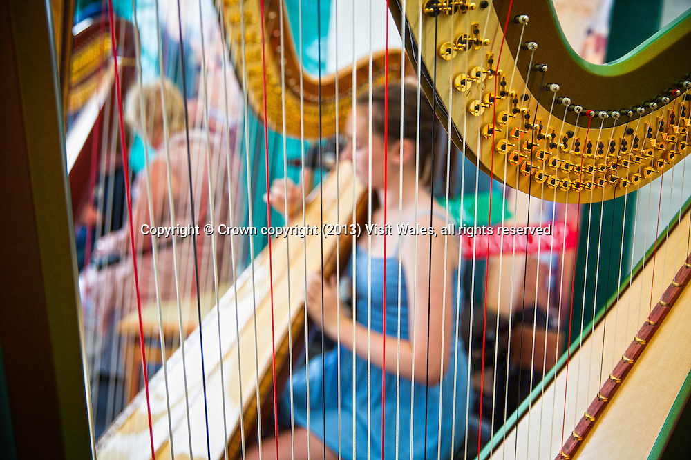 Harpist performing<br /> National Eisteddfod 2013<br /> Denbigh<br /> Denbighshire<br /> North<br /> Music<br /> Arts<br /> Culture<br /> Events