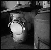 Auf der Alpe di Bietri verarbeitet die Familie Papina im Sommer Milch der seltenen schwarzen Verzascaziegen zu delikaten Formagini.  Die frischen Käse und die Käsemasse wird in Kesseln auf dem Rücken eines Maultieres ins Dorf Megoscia transportiert. Mergoscia, Alpe di Bietri, Verzasca. © Romano P. Riedo