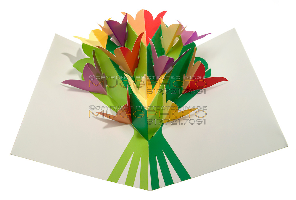 moma pop out flower greeting card